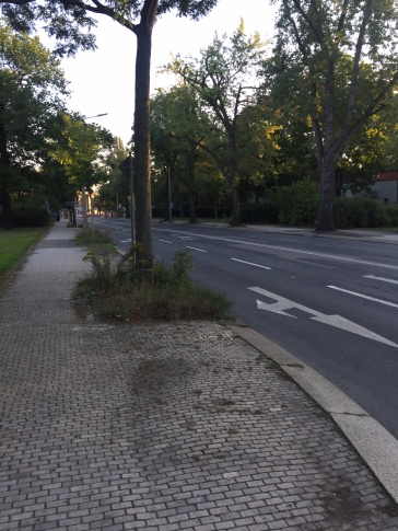 no cars now.